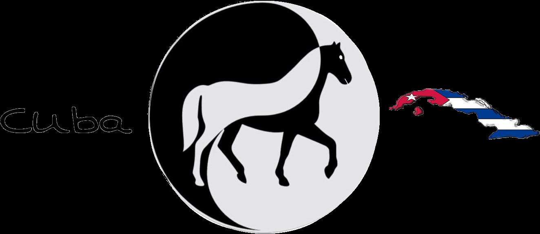 JMC Viñales Aventura Horse-riding